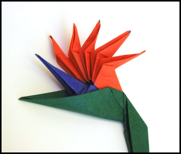 Origami Bird Of Paradise Flower Gallery Decoration Ideas Paper